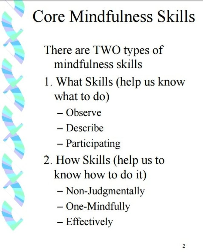 dbt pros and cons pdf