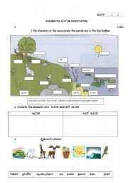 changes of the ecosysytem work sheets pdf
