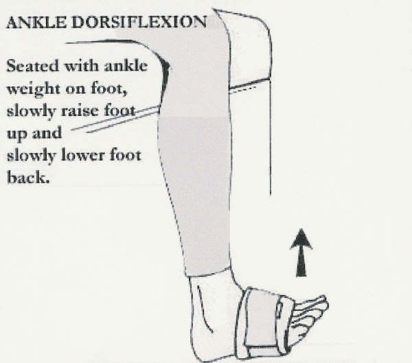 ankle physical therapy exercises pdf